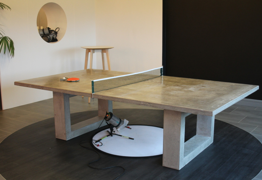 Polished Table Tennis Table