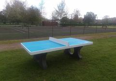 Painted table tennis table